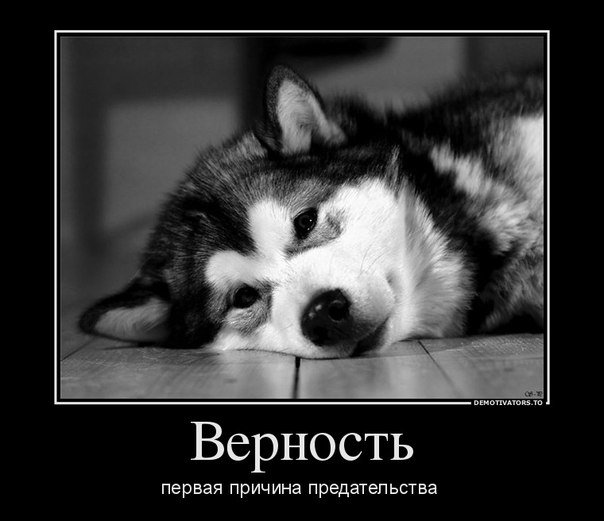 Закон аватарки. Смотрим прикольные ...: xaxa-net.ru/demotivatori/326-zakon-avatarki-prikolnye-demotivatory...