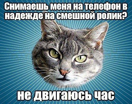 http://xaxa-net.ru/uploads/posts/2013-03/1362757448_0r81tx1y-94.jpg