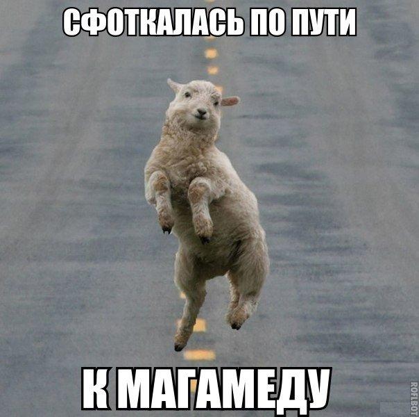 Иван Васильевич - Прикольные комиксы и мемки