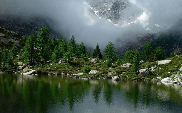 Прикольные фото природы
