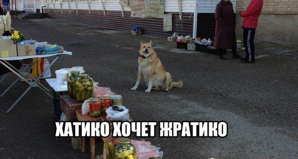День веселья - прикольные мемы