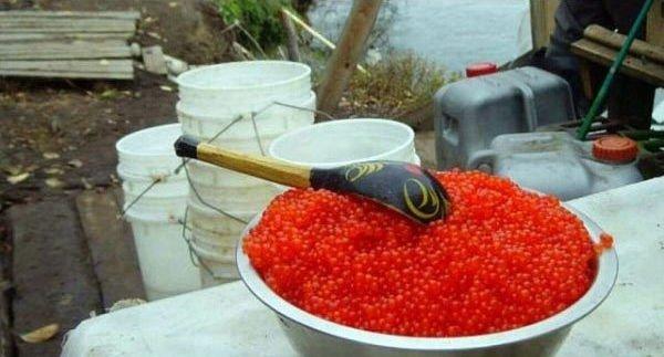 Как живется в Магадане - фото из жизни