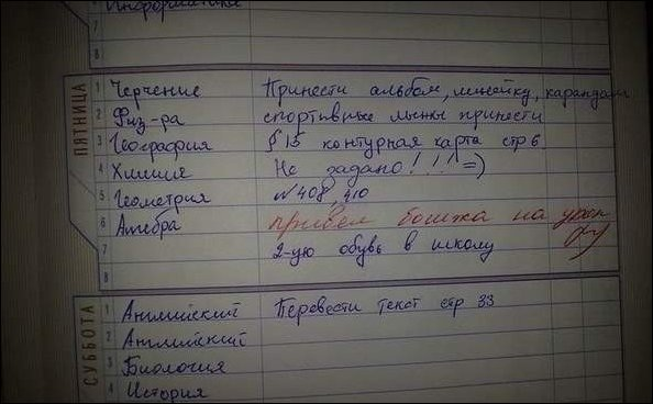 Прикольные записи из дневников школьников