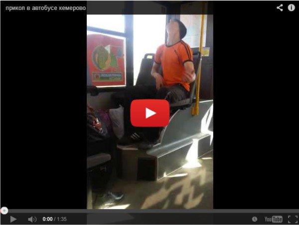 Необычный пассажир автобуса