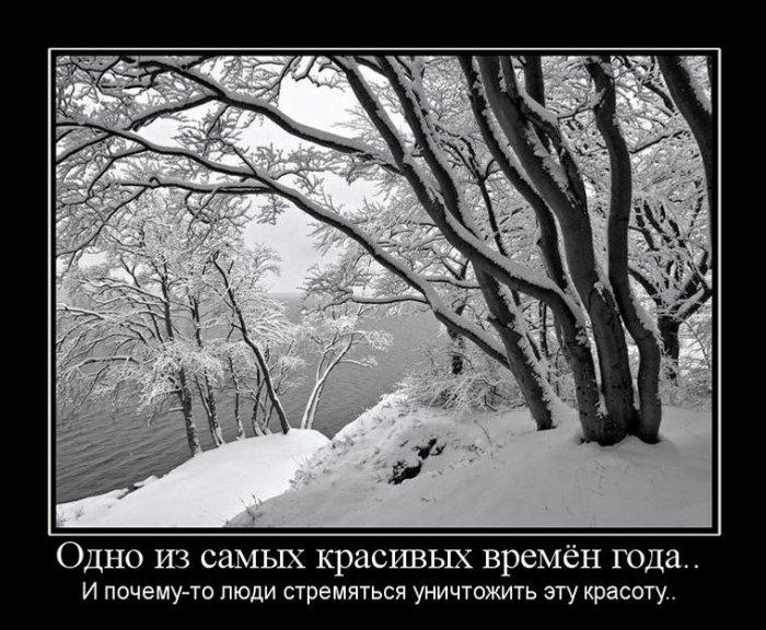 Демотиваторы на зиму