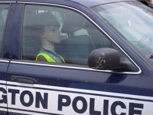 Весёлые будни полицейских - прикольные картинки