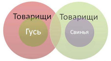 Гуманитарная инфографика - прикольные графики