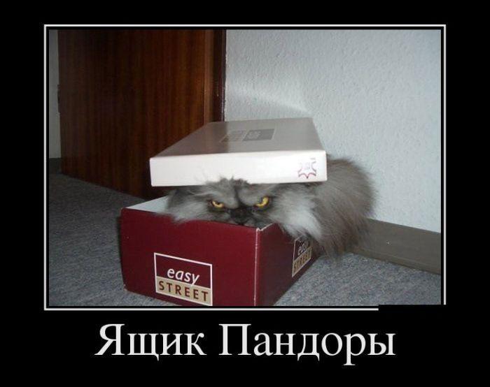 Свежие демотиваторы - Ура, пятница!