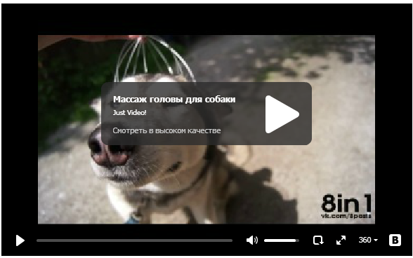 Массаж головы для собаки