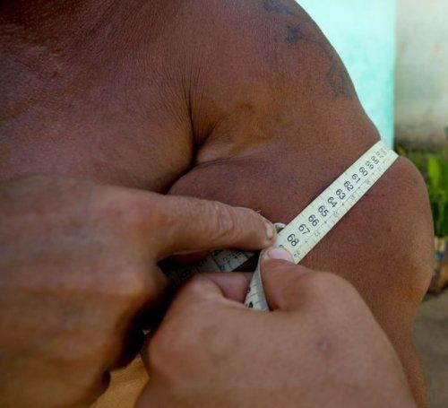 Бразильский бицепс - мировой рекорд