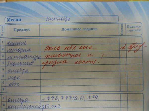 Прикольные замечания из школьных дневников