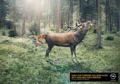 Лучшие образцы печатной рекламы