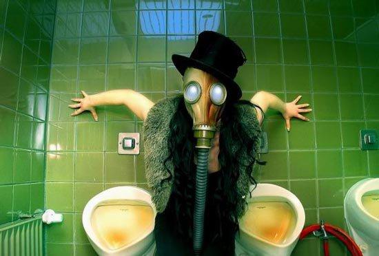 12 интересных фактов о туалетах