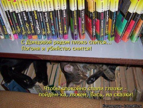 Смешные котоматрицы. Новые прикольные картинки про кошек