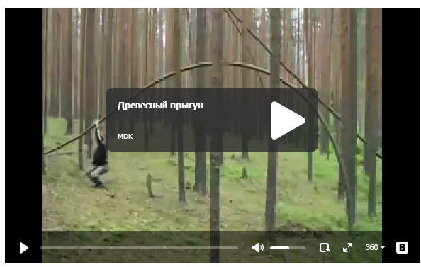 Древесный прыгун - смешное видео
