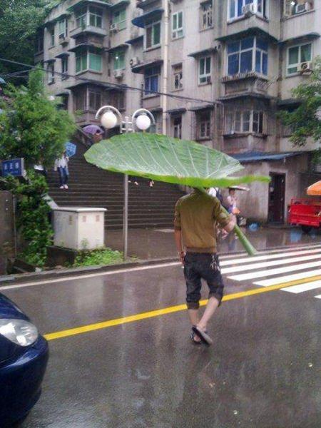 Тем временем на улице... Забавные картинки