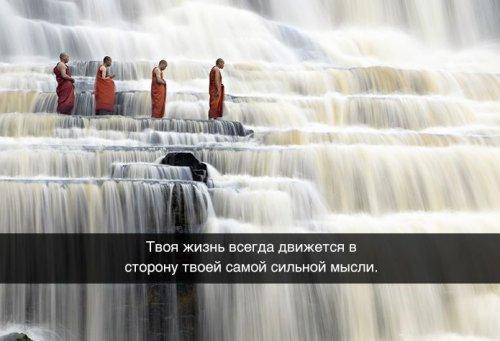 Житейские мудрости в картинках