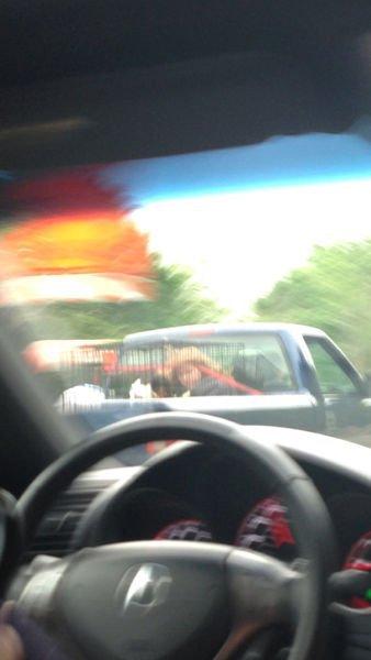 видео приколы на дороге с девушками