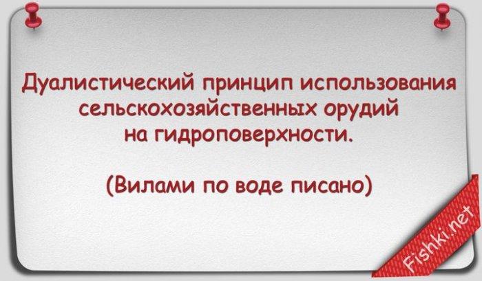 Русские поговорки научным языком