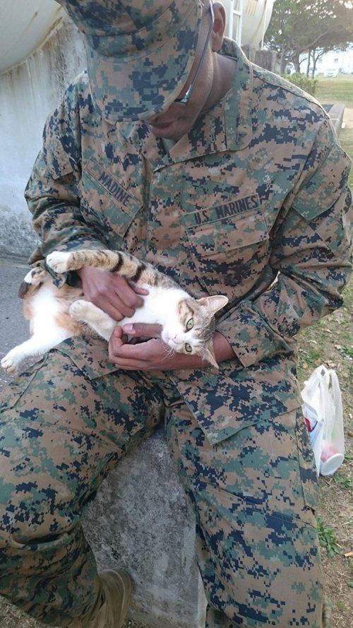 Люди в военной форме с животными. Подборка фото