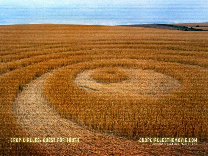 Про загадочные круги на полях