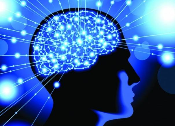 Насколько хорошо используем мы свой мозг?