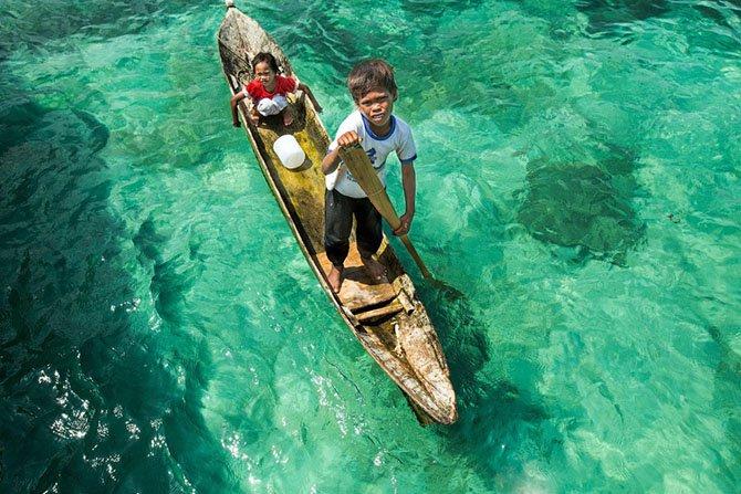 Жизнь на воде. Океанские жители