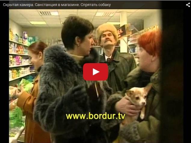 СЭС в магазине, спрячьте собачку. Скрытая камера
