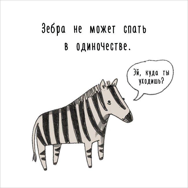 Интересные факты о животных в картинках. Смотрим приколы