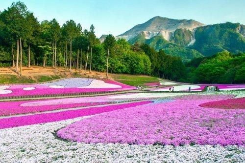 Живописные места нашей планеты. Красивые фото