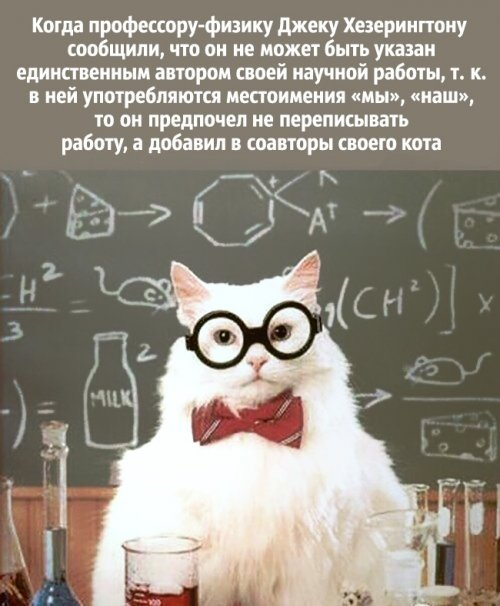 Шутки учёных. Картинки с надписями