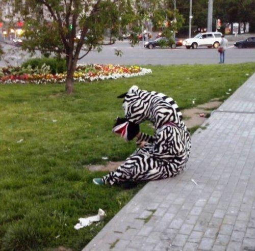 Это Россия, расслабься! Приколы про русских