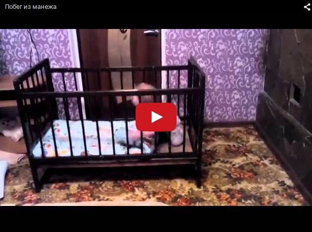 Как убежать из манежа - познавательное видео для родителей