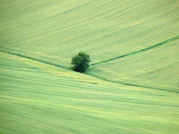 Фотографии природы в стиле минимализма. Красивые картинки