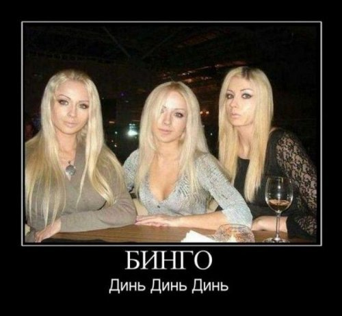 Демотиваторы про блондинок. Лучшие приколы