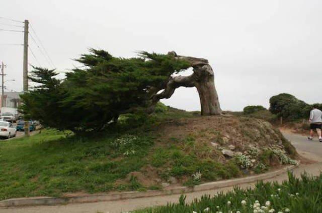 Приколы про ветер