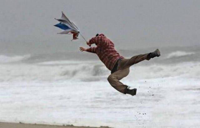 Картинки по запросу смешные картинки про ветер
