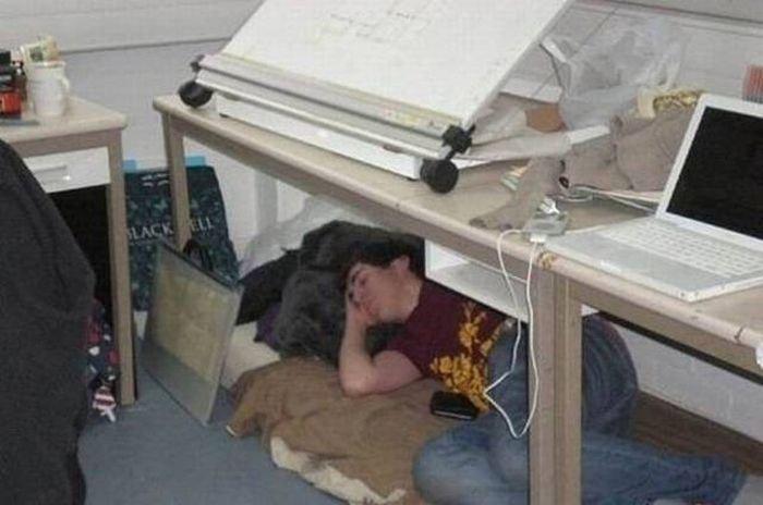 Люди спящие на работе. Прикольные картинки дня