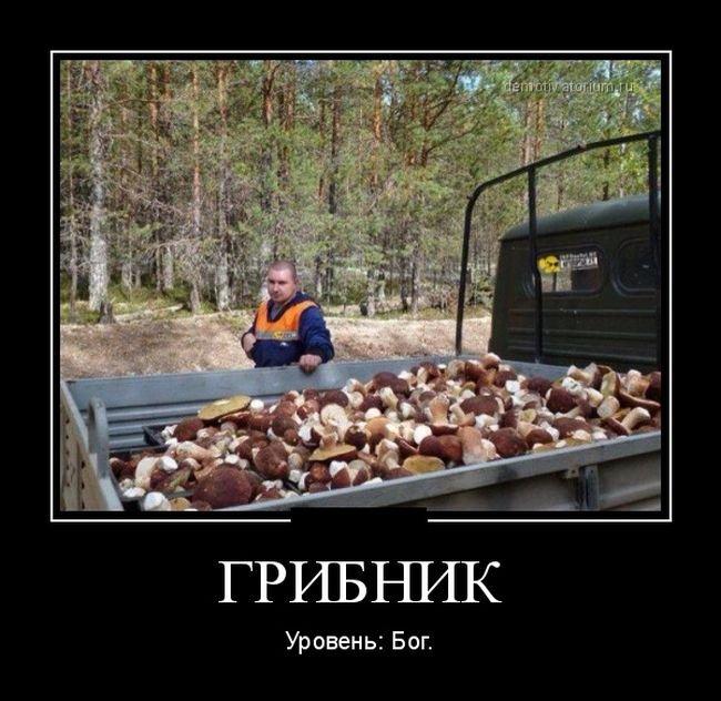Ох уж эти русские... Прикольные демотиваторы