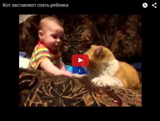 Кот укладывает ребенка спать