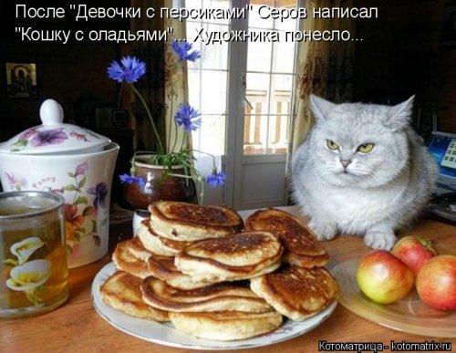 Котоматрицы для души и настроения. Фотки смешных котов