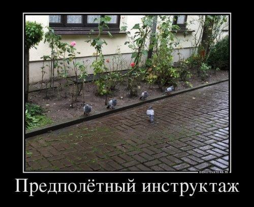 Русские демотиваторы для настроения. Свежие приколы