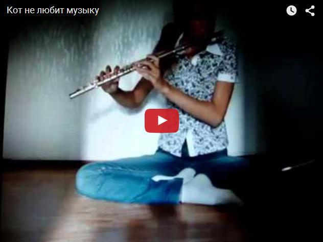 Видео про кота, который не любил музыку