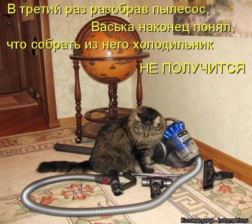 http://xaxa-net.ru/uploads/posts/2015-10/1443869920_12-kotomatricy-uboy_xaxa-net.ru.jpg