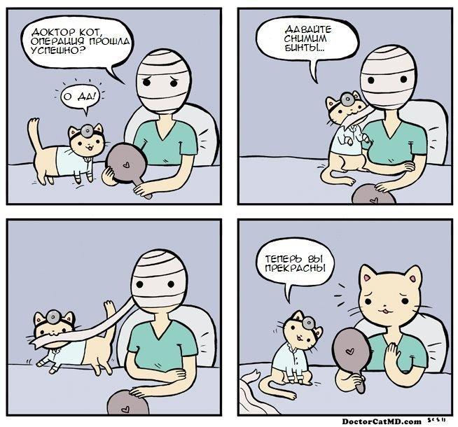 Убойные комиксы для настроения. Забавная подборка