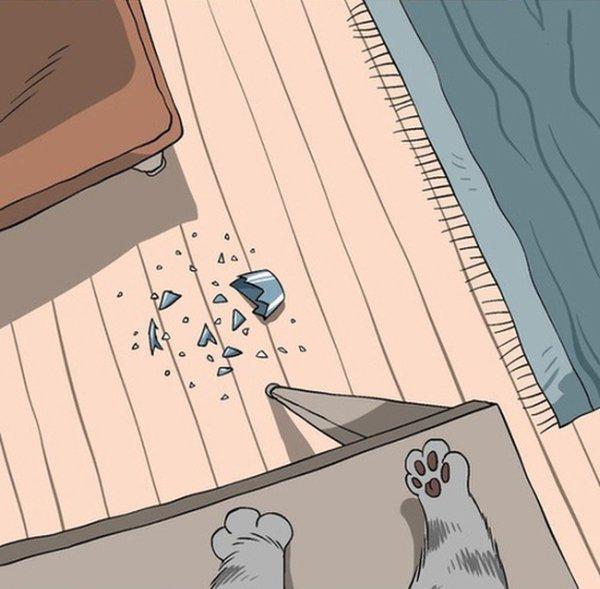 Взгляд на мир глазами котов. Смешные фото