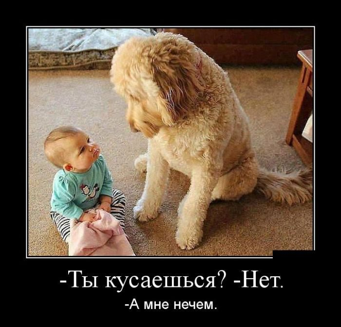 Фотошоп Для Приколов