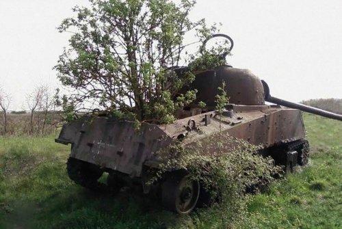 Заброшенная военная техника в разных уголках мира