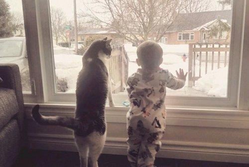 Дети и домашние питомцы. Позитивные фото