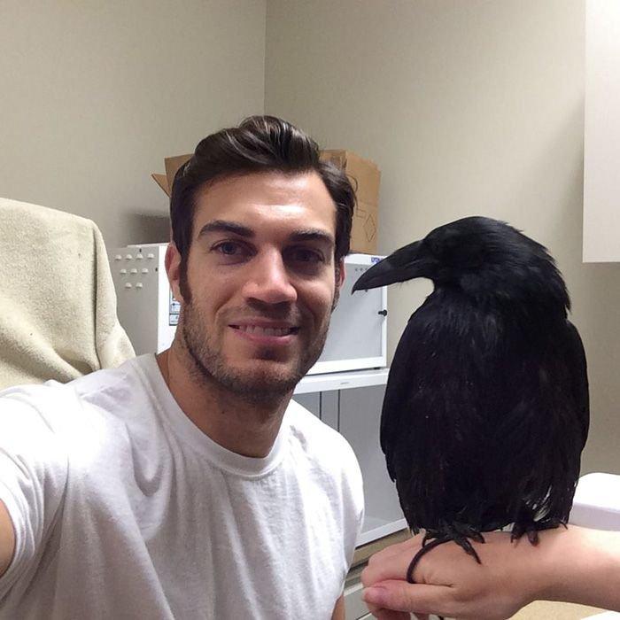 Эван Антин - самый привлекательный ветеринар в мире
